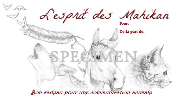 Bon cadeau communication animale specimen